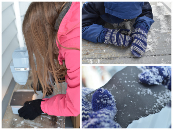 Examining Snowflakes Outside with Microscopes