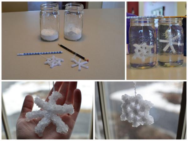 Making Borax Snowflakes