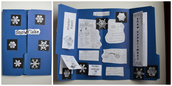 Snow Unit Lapbook