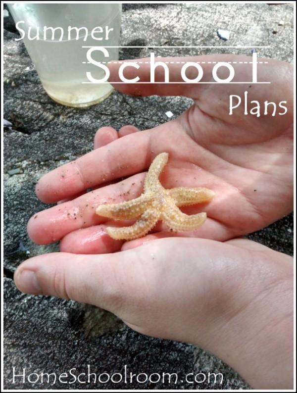 Summer School Plans 2014