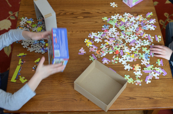 100th day puzzle