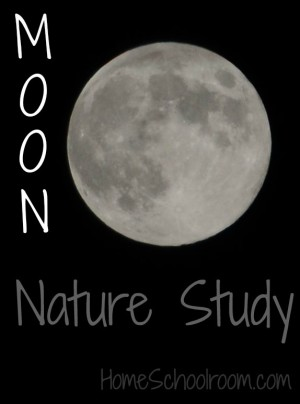 Study the Moon Phases
