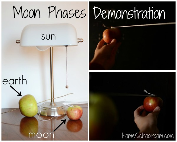 hands-on demonstration of moon phases